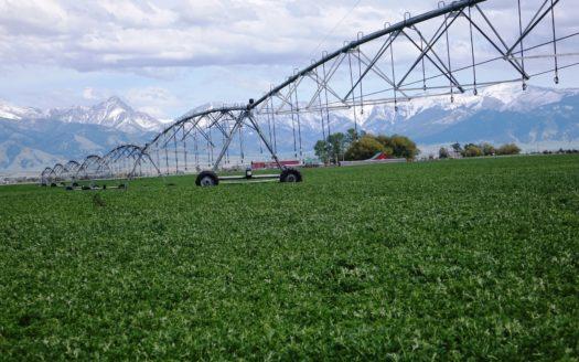 Montana Ranch & Land For Sale   Bozeman MT Ranches   Don